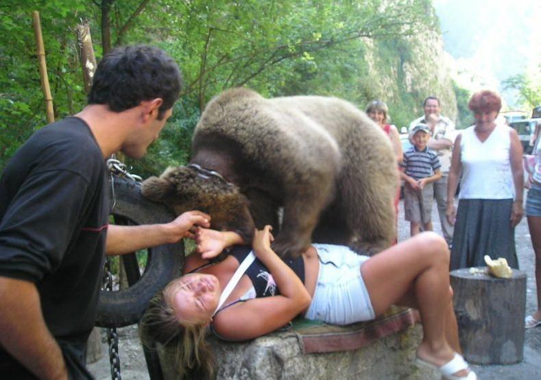 Ursii violatori