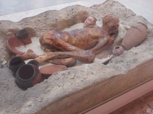 Ingewikkeld | Neanderthal 1