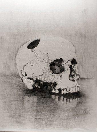 Skull - François Réau 2010
